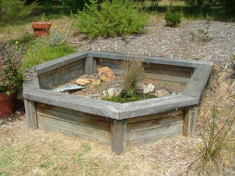 Turtle Pond Ponds And Pond Kits On Pinterest