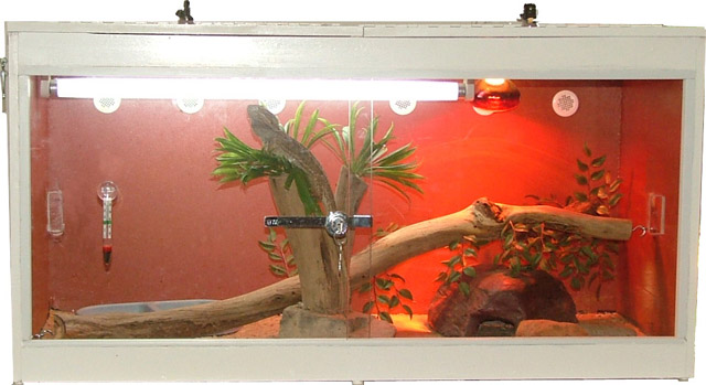 Reptile Cages With Sliding Doors Reptile Tanks For
