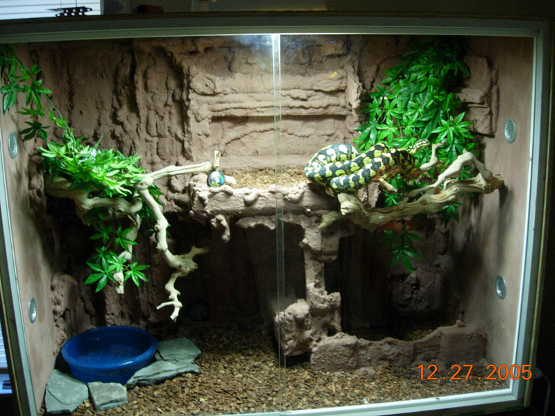 how to build enclosures for reptiles - custom snake cages - arboreal snake cages