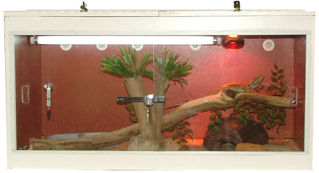 How To Build Enclosures For Reptiles Custom Snake Cages